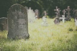 مرگ رزومه ها